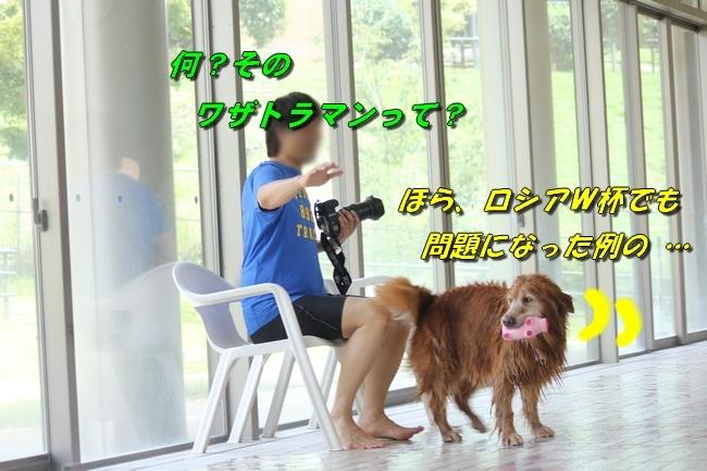 仁&ミミ41度車内写真 157