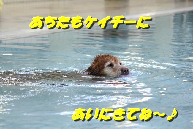 仁&ミミ41度車内写真 060