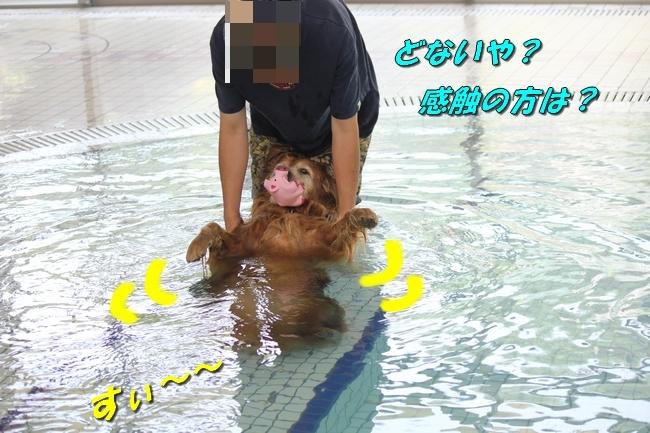 仁&ミミ41度車内写真 179