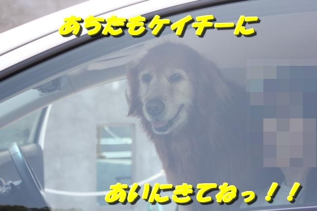 仁&ミミ41度車内写真 232
