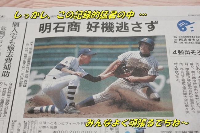 高校野球 005