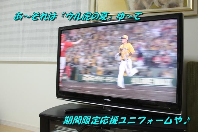 TV鑑賞新聞 035
