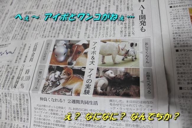 TV鑑賞新聞 059