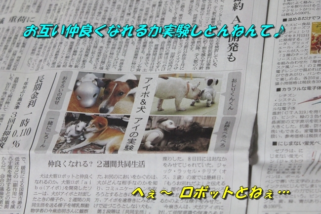 TV鑑賞新聞 060