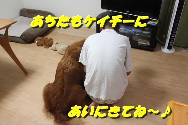 TV鑑賞新聞 061