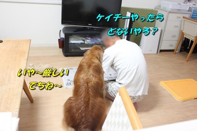 TV鑑賞新聞 063
