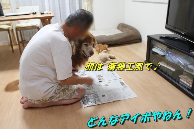 TV鑑賞新聞 066