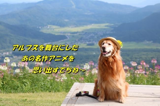 2018 summer vacation 1 174