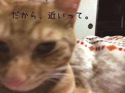 帰還 (2)