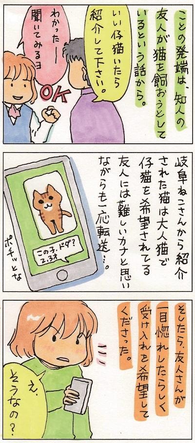 猫って生き物なんだよ1 2-3