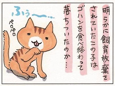 猫って生き物なんだよ5 1-2
