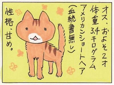 猫って生き物なんだよ6 1-4
