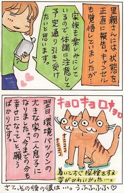 猫って生き物なんだよ6 4-4