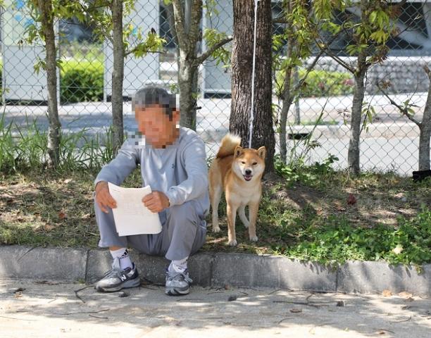 2018-04-29高知連合展成犬雌こばこ1
