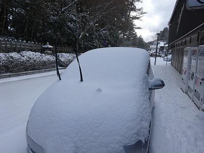 大きな雪見大福