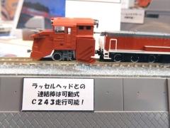 DSCN2070_R.jpg