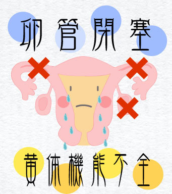 00_ohanashi_001_02.jpg