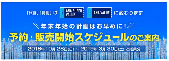 ANA国内線販売導入.jpg