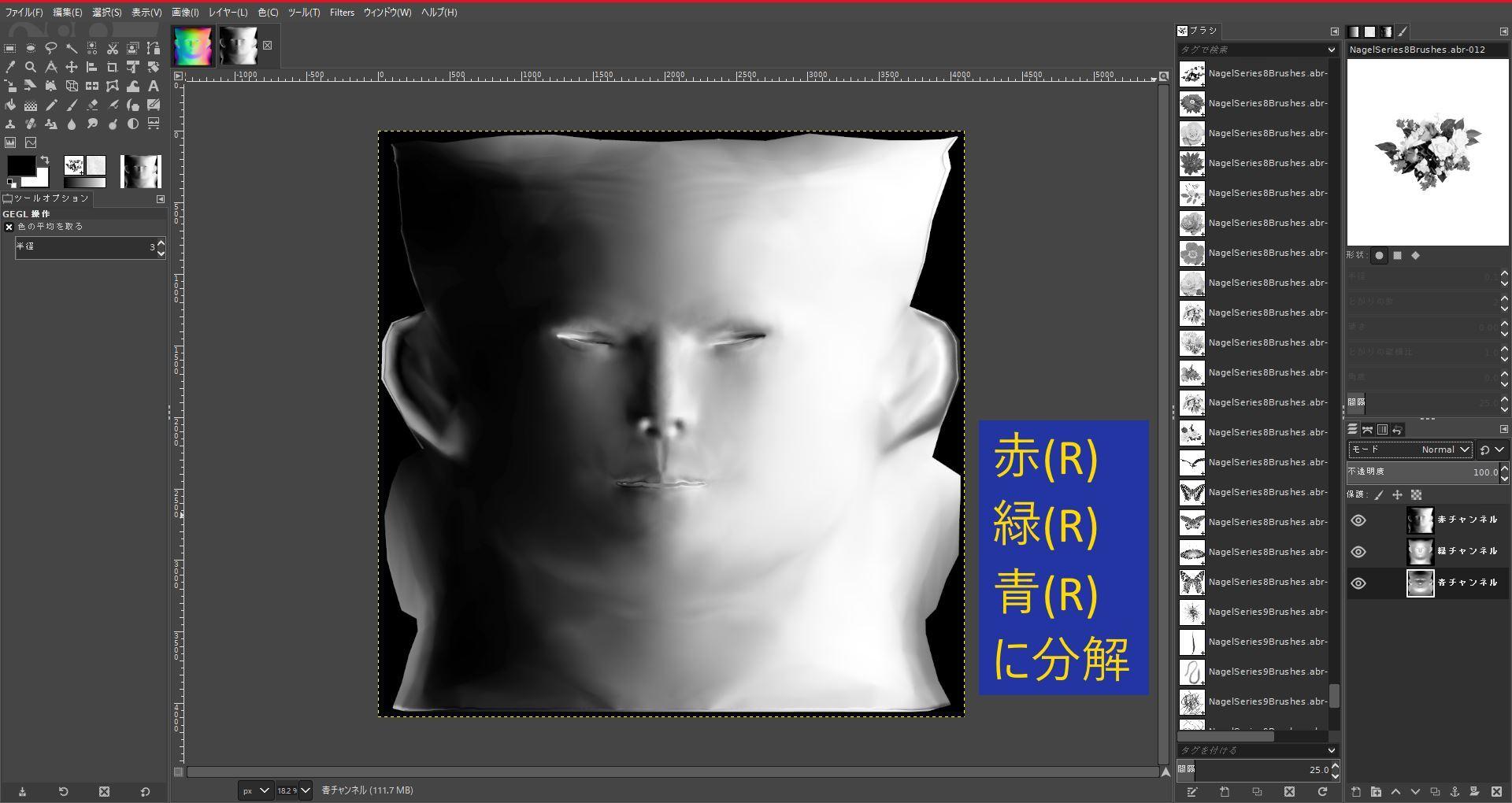 FemaleFaceNM201808SK 033-1 Info GIMP 1