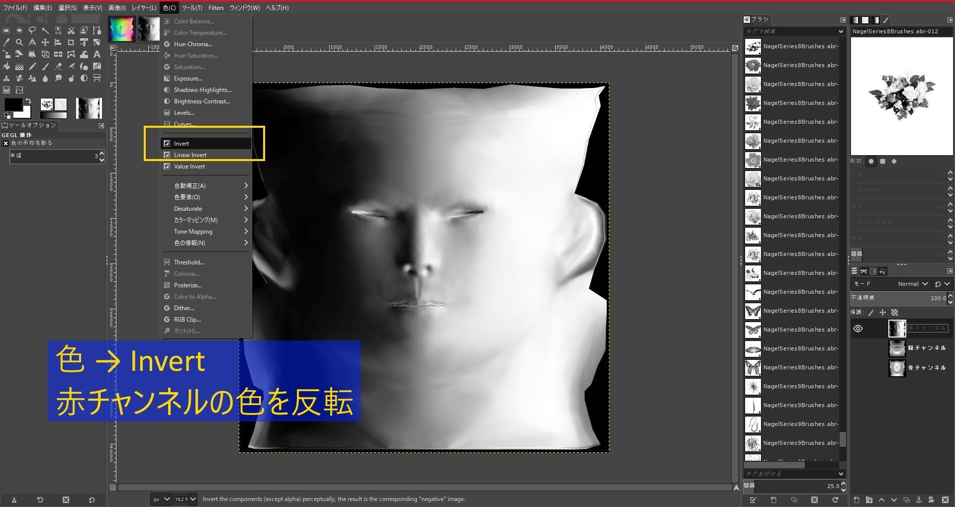 FemaleFaceNM201808SK 037-1 Info GIMP 1
