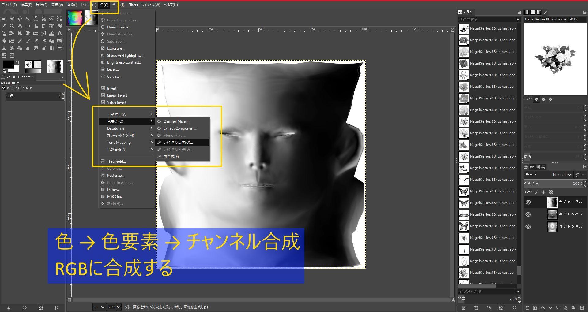 FemaleFaceNM201808SK 042-1 Info GIMP 1