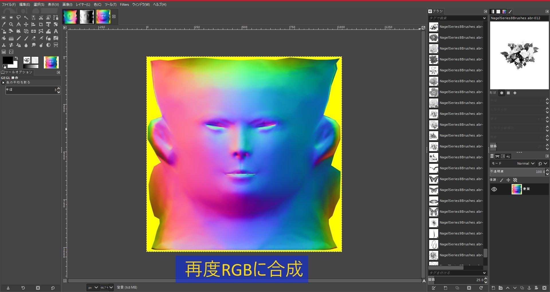 FemaleFaceNM201808SK 044-1 Info GIMP 1