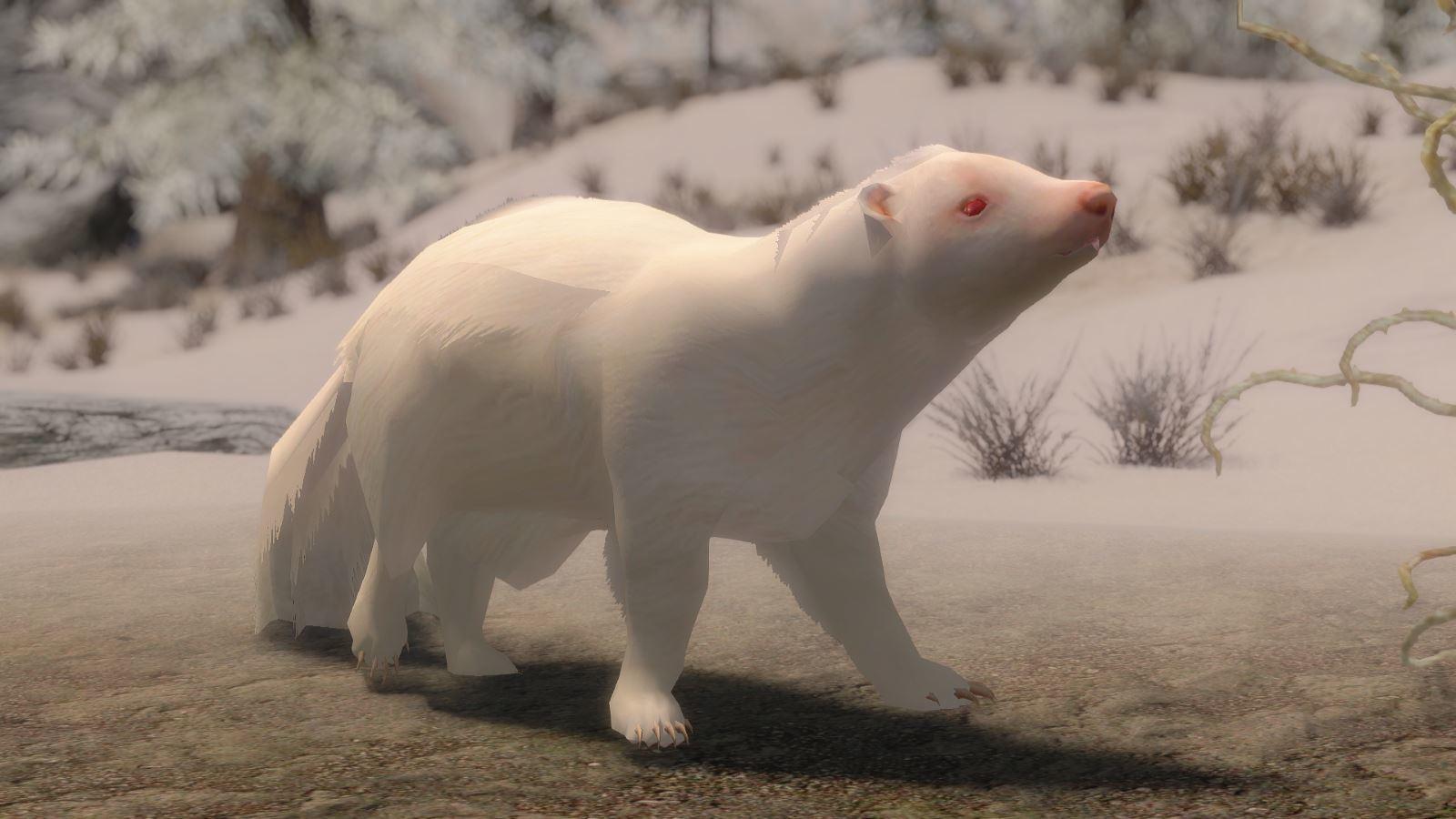 RacoonSkunkMihailSK 121-1 Pose SnowSkunk 1