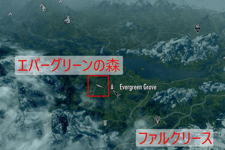 MoaEmuMihailSK 216-1 Info EvergreenGrove 1 1