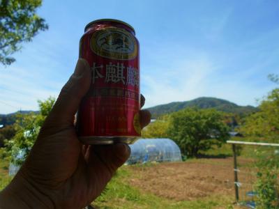 5.11畑でビール