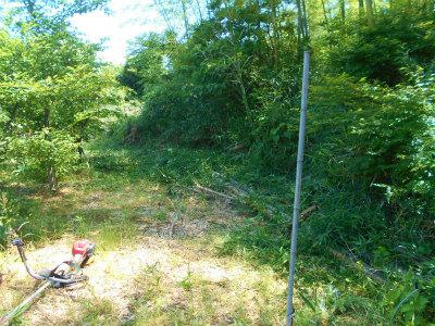 6.2空地の草刈り