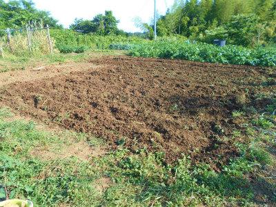 6.7収穫後の耕耘