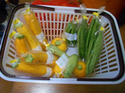 6.29出荷野菜
