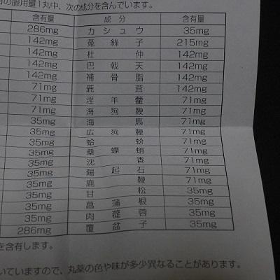 片桐棲龍堂 (10)
