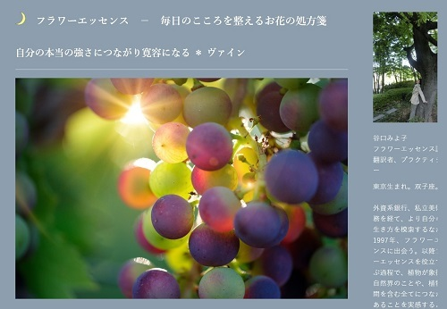 vine_mahina.jpg