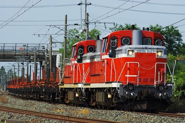 IMGP1371.jpg