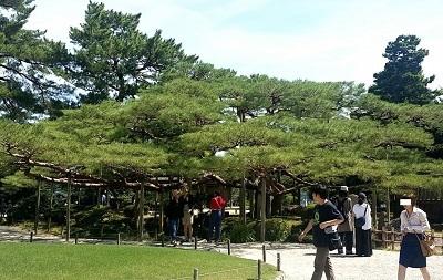 180820_kanazawa114.jpg
