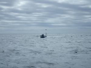 P9230027 10時過ぎシマアジ釣って帰ってきたJBB280sann