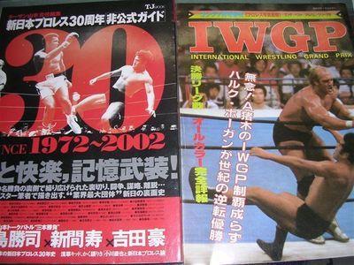 新日本非公式ガイド、IWGP猪木ホーガン