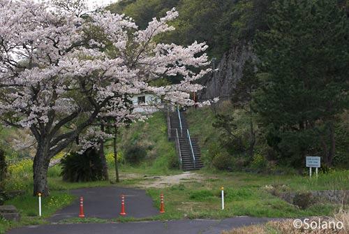JR西日本・山陰本線、湯里駅旧駅舎跡地と桜