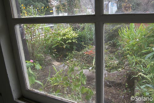 日田彦山線・夜明駅の待合室から見た池庭跡