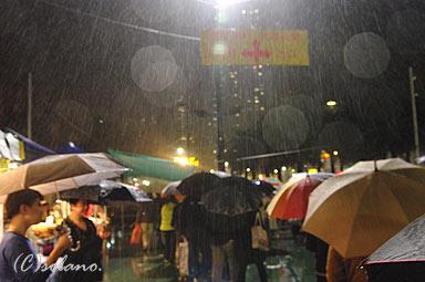 香港、旧正月前の年末、ビクトリアパークの年宵花市