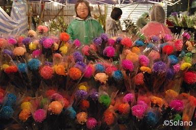 香港の年末、旧正月前の年宵花市、露店の花屋
