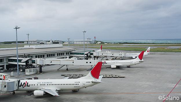 朝の那覇空港、国内線ターミナルJALとJTA側