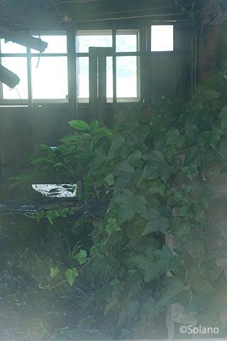 平成筑豊鉄道田川線・崎山駅、ぼうぼうの草に占拠される駅舎1階
