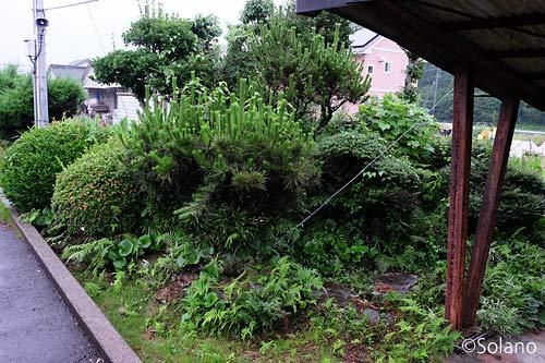 松浦鉄道・蔵宿駅、駅舎側ホームの池庭跡