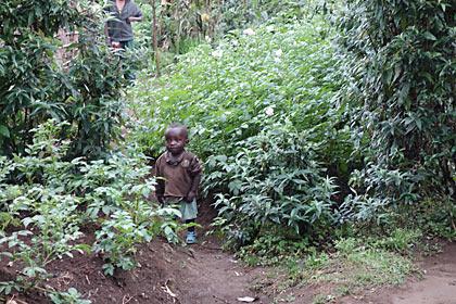 アフリカ・ルワンダ、山村の子供