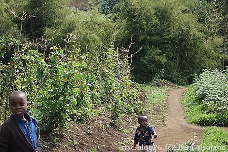 ルワンダ・ゴリラトレッキング、帰路で出会った子供たち
