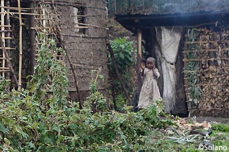 ルワンダの子供、ゴリラトレッキング一行に興味津々