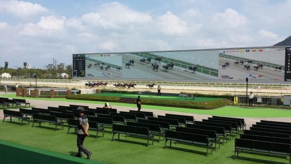 ソウル競馬_レース