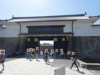 京都世界遺産元離宮二条城